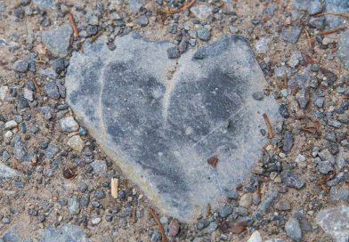 Elle voit des cœurs partout (ou presque)